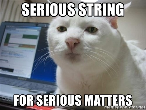 Serious Cat - SERIOUS STRING FOR SERIOUS MATTERS