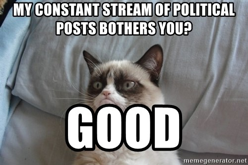 Grumpy cat good - My constant stream of political posts bothers you? Good