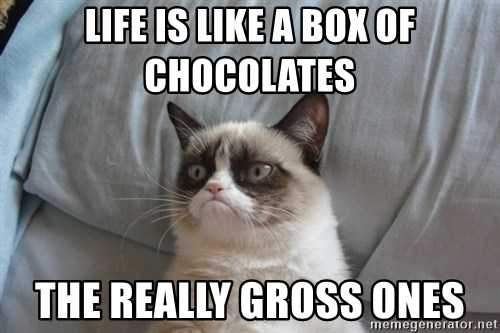 Grumpy cat good - life is like a box of chocolates the really gross ones