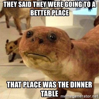 Sad Otter - they said they were going to a better place that place was the dinner table