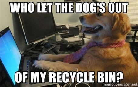 I have no idea what I'm doing - Dog with Tie - who let the dog's out of my recycle bin?