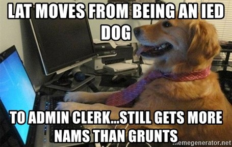 I have no idea what I'm doing - Dog with Tie - lat moves from being an ied dog to admin clerk...still gets more nams than grunts