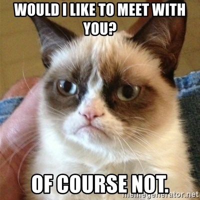 Grumpy Cat  - would i like to meet with you? of course not.