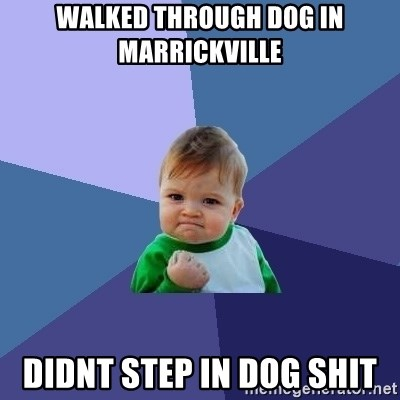 Success Kid - walked through dog in marrickville didnt step in dog shit