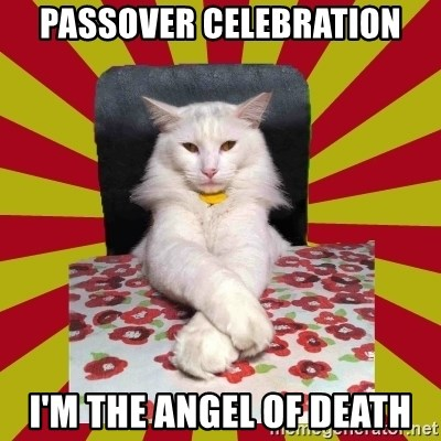 Dictator Cat - passover celebration I'm the angel of death