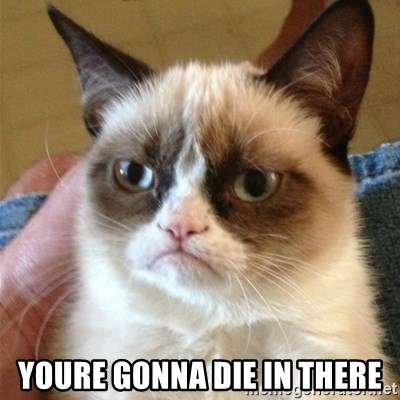 Grumpy Cat  -  youre gonna die in there