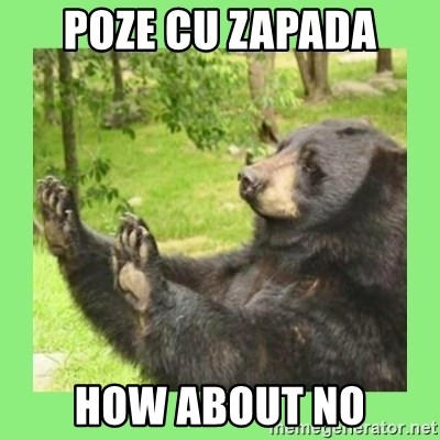 how about no bear 2 - poze cu zapada how about no
