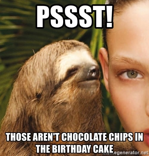 The Rape Sloth - Pssst! Those aren't chocolate chips in the birthday cake