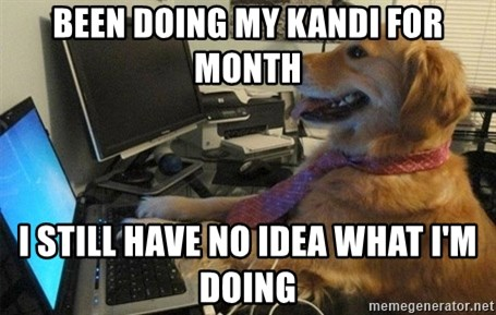 I have no idea what I'm doing - Dog with Tie - been doing my kandi for month I still have no idea what i'm doing