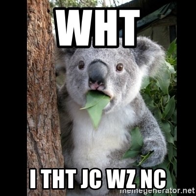 Koala can't believe it - wht i tht jc wz nc