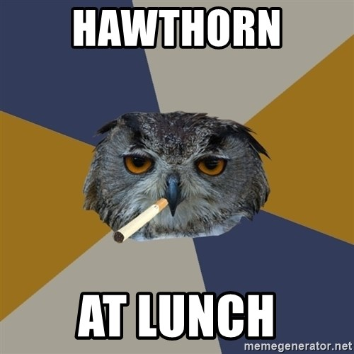 Art Student Owl - HAWTHORN  AT LUNCH