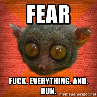 Scared lemur - FEAR FUCK. EVERYTHING. AND. RUN.