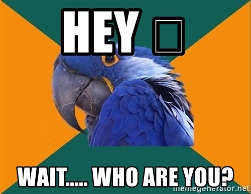 Paranoid Parrot - HEY 😃 WAIT..... WHO ARE YOU?