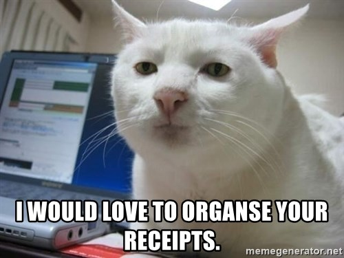 Serious Cat -  i would love to organse your receipts.