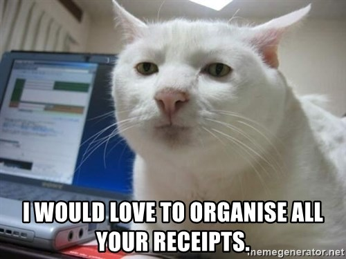 Serious Cat -  i would love to organise all your receipts.