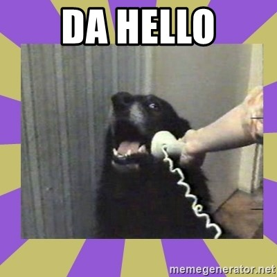 Yes, this is dog! - DA HELLO