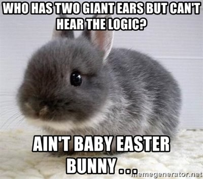 ADHD Bunny - who has two giant ears but can't hear the logic? ain't baby easter bunny . . .