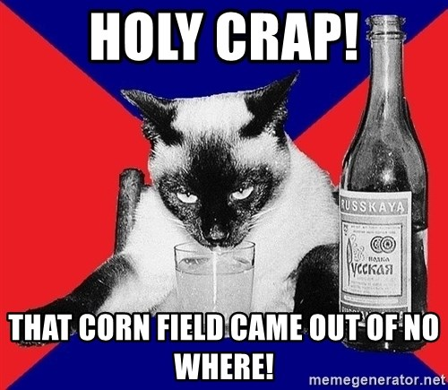 Alco-cat - HOLY Crap! ThAT CORN FIELD CAME OUT OF NO WHERE!