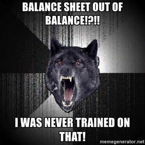 flniuydl - BALANCE SHEET OUT OF BALANCE!?!! I WAS NEVER TRAINED ON THAT!