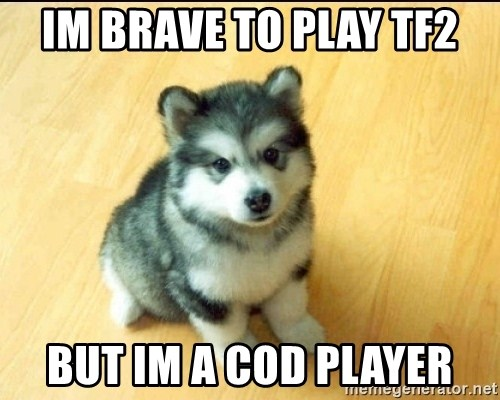 Baby Courage Wolf - IM BRAVE TO PLAY TF2 BUT IM A COD PLAYER