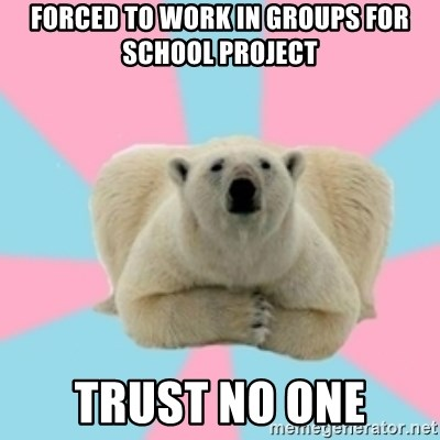 Perfection Polar Bear - Forced to work in groups for school project trust no one