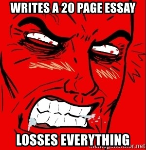 Rage Face - writes a 20 page essay losses everything