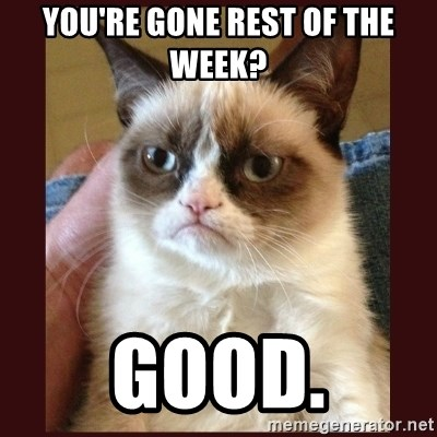 Tard the Grumpy Cat - you're gone rest of the week? good.