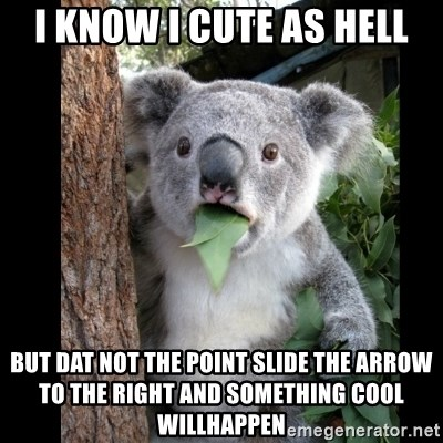 Koala can't believe it - I KNOW I CUTE AS HELL BUT DAT NOT THE POINT SLIDE THE ARROW TO THE RIGHT AND SOMETHING COOL WILLHAPPEN
