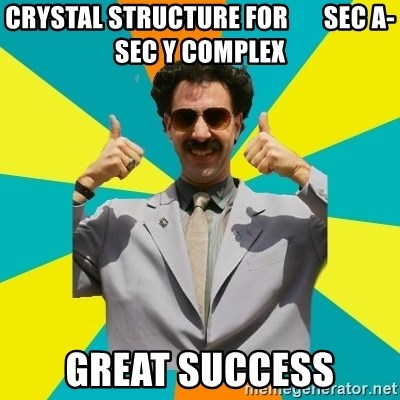 Borat Meme - CRYSTAL STRUCTURE FOR       Sec a- sec y complex gREAT SUCCESS