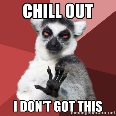 Chill Out Lemur - CHILL OUT  I DON'T GOT THIS