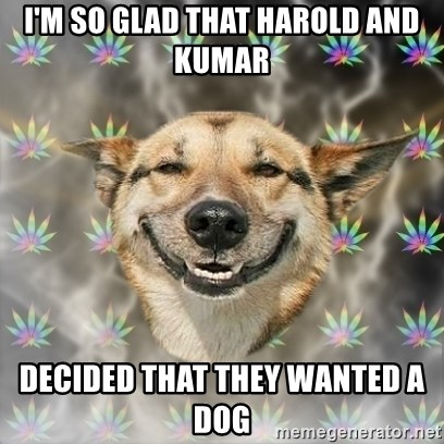 Stoner Dog - I'M SO GLAD THAT HAROLD AND KUMAR  DECIDED THAT THEY WANTED A DOG