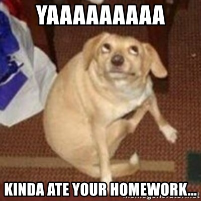 Oh You Dog - yaaaaaaaaa kinda ate your homework...
