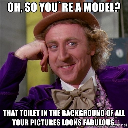 Willy Wonka - Oh, so you`re a model? That toilet in the background of all your pictures looks fabulous.