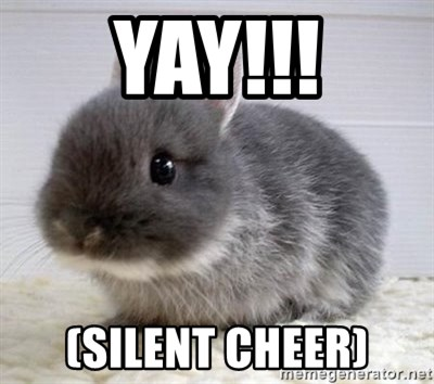 ADHD Bunny - Yay!!! (silent cheer)