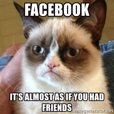 Grumpy Cat  - Facebook It's almost as if you had friends