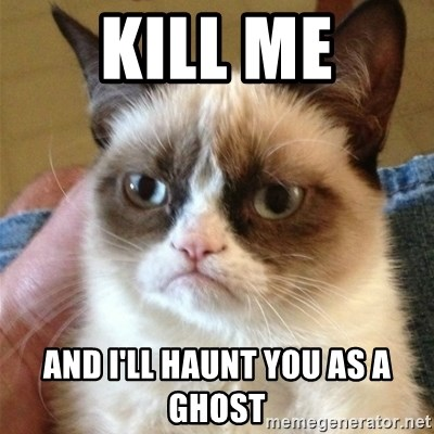 Grumpy Cat  - kill me and I'll haunt you as a ghost