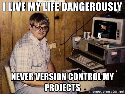 Nerd - i live my life dangerously never version control my projects