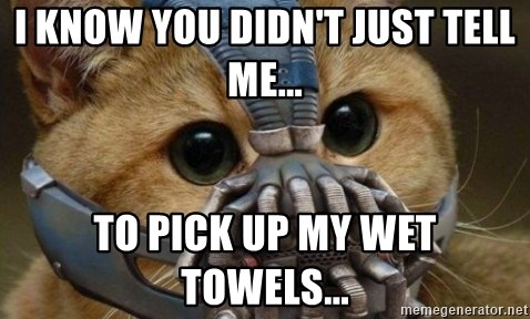bane cat - I know you didn't just tell me... To pick up my wet towels...