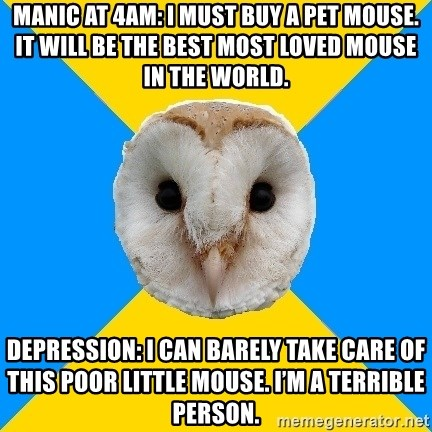 Bipolar Owl - MANIC AT 4AM: I MUST BUY A PET MOUSE. IT WILL BE THE BEST MOST LOVED MOUSE IN THE WORLD. DEPRESSION: I CAN BARELY TAKE CARE OF THIS POOR LITTLE MOUSE. I'M A TERRIBLE PERSON.