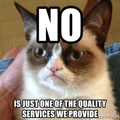 Grumpy Cat  - NO is just one of the quality services we provide