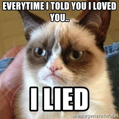 Grumpy Cat  - Everytime I told you I loved you.. I lied