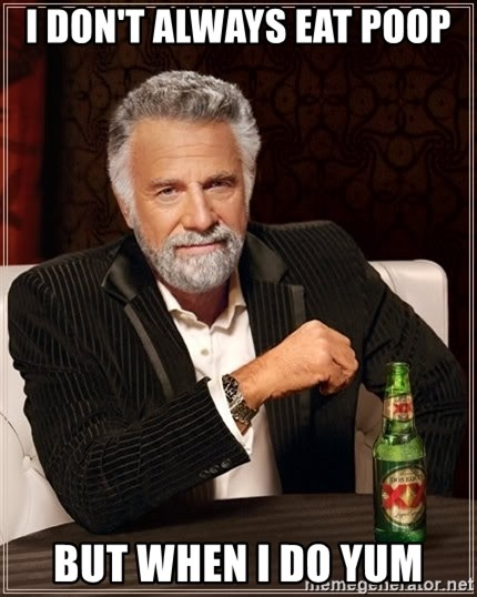 The Most Interesting Man In The World - i don't always eat poop but when i do yum