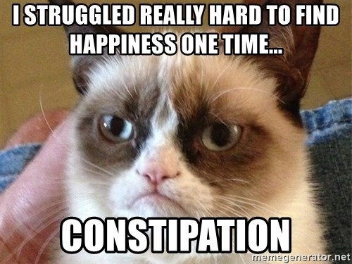 Angry Cat Meme - I struggled really hard to find hapPiness one time... Constipation