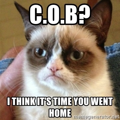 Grumpy Cat  - C.o.b? I think it's time you went hoMe