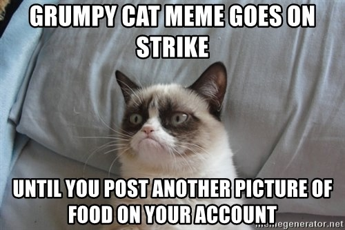 Grumpy cat good - Grumpy cat meme goes on strike until you post another picture of food on your account