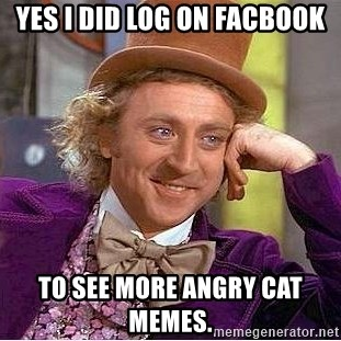 Willy Wonka - yes i did log on facbook To see more angry cat memes.