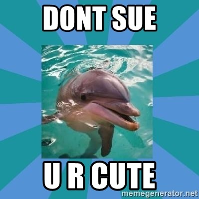 Dyscalculic Dolphin - DONT SUE U R CUTE
