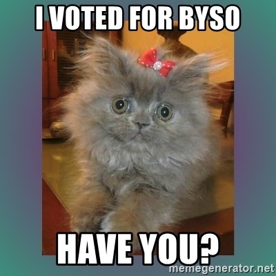 cute cat - I voted for byso have you?
