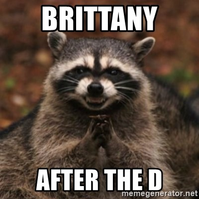 evil raccoon - BRITTANY  AFTER THE D
