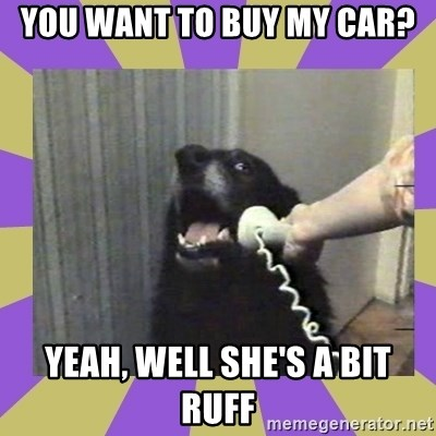 Yes, this is dog! - YOU WANT TO BUY MY CAR? YEAH, WELL SHE'S A BIT RUFF